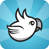 Racing Birds HD